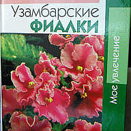 Книга Узамбарские фиалки Н.Ф. Андреева